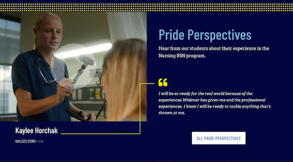 screenshot of a Pride Perspective feature